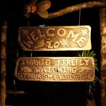 Firefly Watching in Puerto Princesa
