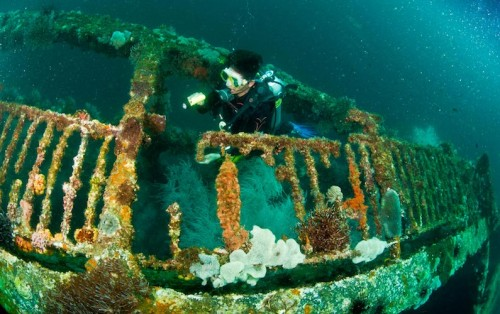Skeleton Wreck in Coron