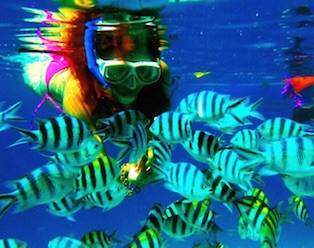 Snorkeling Spot - El Nido Island Hopping Tour B
