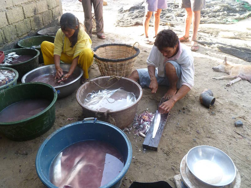 Washing the fishes - El Nido Cultural Tour